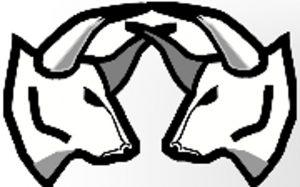 Illetschkos1 web