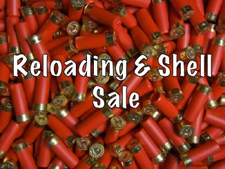 Shell Sale-01